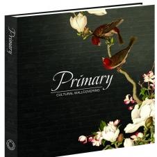 《Primary 2》